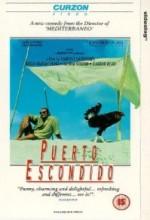 Puerto Escondido (1992) afişi