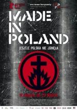 Polonya Yapımı (2010) afişi