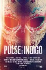 Pulse of the Indigo (2012) afişi