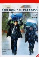 Qui Non è Il Paradiso (2000) afişi