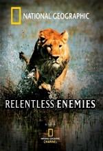 Relentless Enemies (2006) afişi