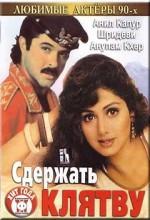 Roop Ki Rani Choron Ka Raja (1993) afişi