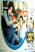 Sarmaş Dolaş (1977) afişi