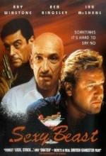 Seksi Hayvan (2000) afişi