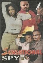 Sensational Spy (2004) afişi