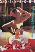 Shinaeri (1993) afişi