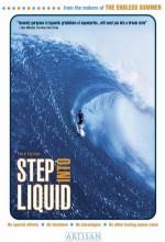 Step ınto Liquid (2003) afişi