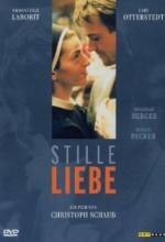 Stille Liebe (2001) afişi