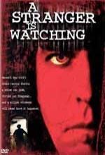 Stranger ıs Watching