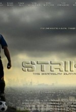 Striker(ı) (2011) afişi