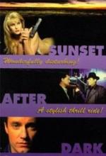 Sunset After Dark (1996) afişi
