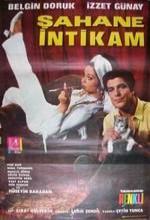 Şahane intikam (1969) afişi