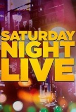 Saturday Night Live Season 13 (1987) afişi