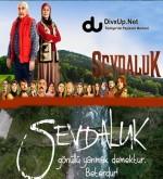 Sevdaluk Sezon 1 (2013) afişi