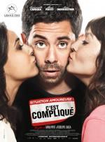 Situation amoureuse: C'est compliqué (2014) afişi