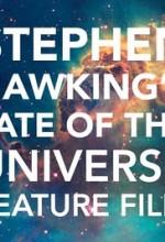 Stephen Hawking's Fate of the Universe (2017) afişi