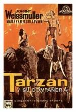 Tarzan And His Mate (1934) afişi