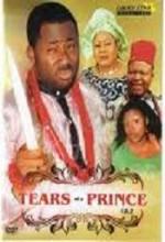 Tears Of A Prince (2009) afişi