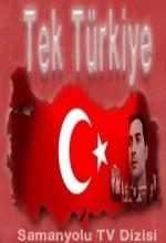 Tek Türkiye