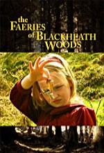 The Faeries Of Blackheath Woods (2006) afişi