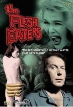 The Flesh Eaters (1964) afişi