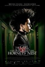Arı Kovanına Çomak Sokan Kız (2009) afişi