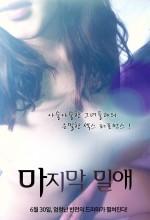 The Last Liaison (2011) afişi