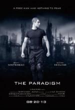 The Paradigm (2010) afişi