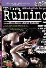 The Ruining (2004) afişi