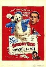 The Shaggy Dog(ı)