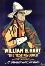 The Testing Block (1920) afişi