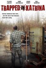 Trapped ın Katrina (2009) afişi