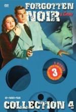 Treasure Of Monte Cristo (1949) afişi