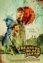 Treasure Of The Black Jaguar (2010) afişi