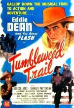 Tumbleweed Trail (1946) afişi
