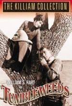 Tumbleweeds (1925) afişi