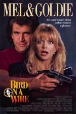 Teldeki Kuş (1990) afişi