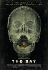 Körfez (2012) afişi