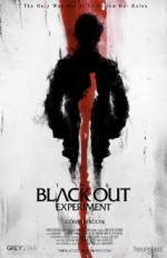 The Blackout Experiment (2014) afişi