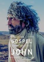 The Gospel of John (2013) afişi