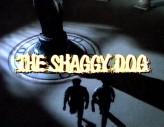 The Shaggy Dog!! (1994) afişi