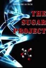 The Sugar Project  afişi
