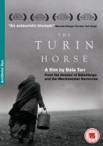 Torino Atı