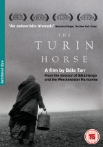 Torino Atı (2011) afişi