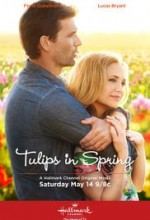 Tulips for Rose (2016) afişi