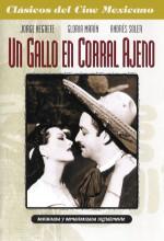 Un Gallo En Corral Ajeno (1952) afişi