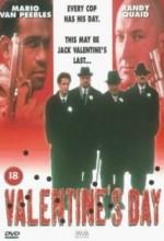 Valentine's Day! (1998) afişi