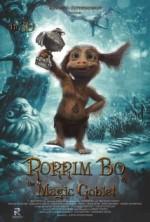 Volshebnyy kubok Rorrima Bo (2015) afişi