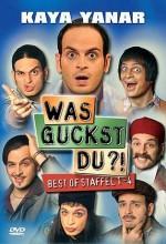 Was guckst du?! – Best of Staffel 1–4 (2004) afişi