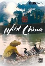 Wild China (2008) afişi